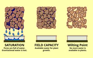 ConnectedCrops- optimize irrigation systems